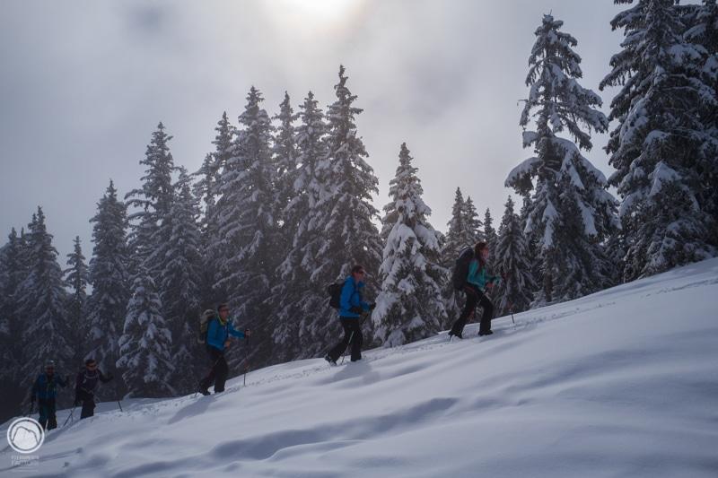 Legette Mirantin ski