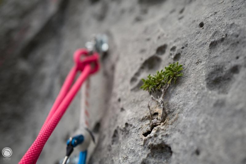 grimpe Verdon